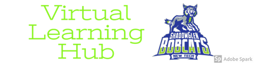 Virtual Learning Hub