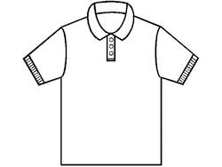 Polo (collared) shirt