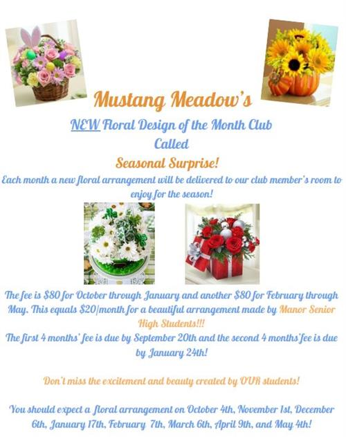 Mustang Meadow Seasonal Surprise